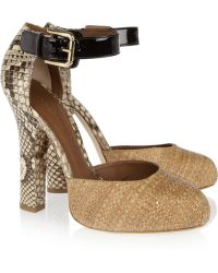 Dolce & Gabbana Raffia and Python Pumps - Lyst