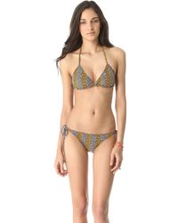 Issa - Zebra Candy Print Bikini Top - Lyst