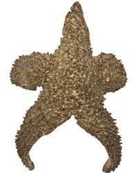 Alkemie - Starfish Cuff - Lyst