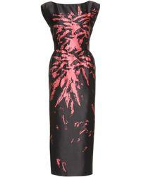 Miu Miu Midilength Print Dress - Lyst