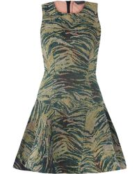 Antipodium - Green Sheer Back Tiger Tapestry Print Dress - Lyst