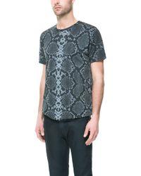 Zara Animal Print T-Shirt - Lyst
