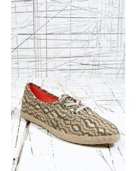 Pro Keds - Keds Pointer Plimsolls in Animal - Lyst