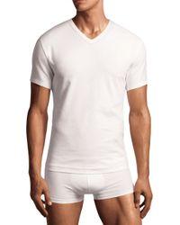 Calvin Klein Basic V neck T shirt Tall 2pack - Lyst