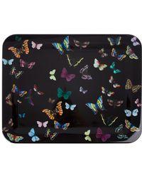 Fornasetti - Butterflys On Black Tray - Lyst