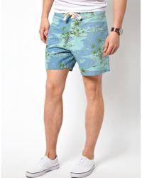 Lightning Bolt - Printed Beach Pelican Shorts - Lyst