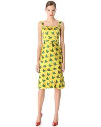 L'Wren Scott Peach Love Belted Dress - Lyst