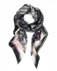 Emma J Shipley - Gorilla Silverback Silk Scarf in Anthracite By - Lyst