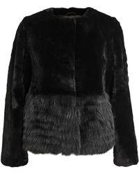 Co. Rabbit and Fox Fur Coat - Lyst
