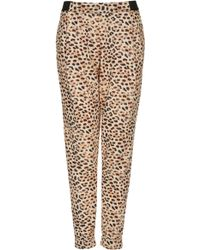 Topshop Leopard Print Tapered Joggers - Lyst