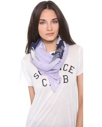 We Are Owls - Stay Cashmere Scarf - Lyst