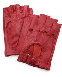 Carolina Amato Fingerless Moto Gloves - Grey - Lyst