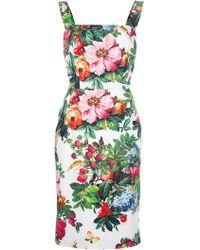 Dolce & Gabbana Floral Print Sleeveless Dress - Lyst