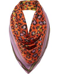 Helene Berman Animal Print Stripe Border Silk Scarf - Lyst