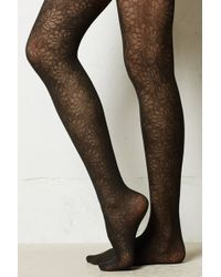 Eloise - Sheer Floral Tights - Lyst