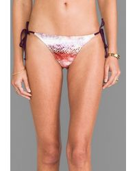 L*space L Ooh La La Bottom in Purple - Lyst