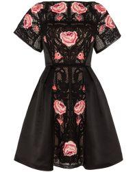 Temperley London Beatriz Show Dress - Lyst