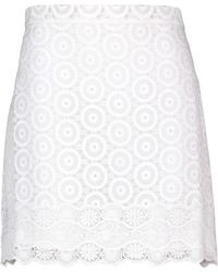 Vanessa Bruno Athé Embroidered Cotton And Silk Organza Skirt - Lyst