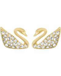 Swarovski - Swan Goldtone And Crystal Stud Earrings - Lyst