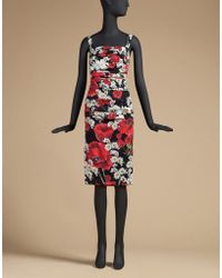 Dolce & Gabbana | Printed Stretch-Silk Sheath Dress  | Lyst