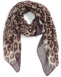 Tasha - Leopard Print Scarf - Lyst