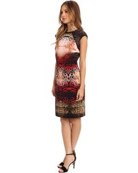 Maggy London Printed Cap Sleeve Ombre Dress - Lyst