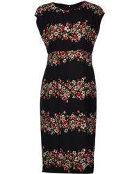 Dolce & Gabbana Black Kneelength Dress - Lyst