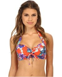 Seafolly Field Trip Soft Cup Halter Top floral - Lyst