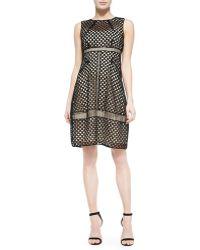 Lela Rose Sleeveless Mixed-lace Dress - Lyst