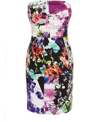 Coast Amy Print Bandeau Dress - Lyst