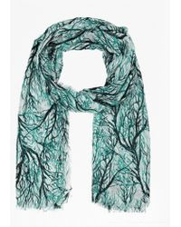 French Connection Loreli Printed Scarf multicolor - Lyst