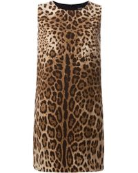 Dolce & Gabbana Animal Shift Dress - Lyst
