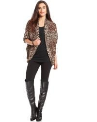 Steve Madden Animal Print Open Cape Cardigan - Lyst