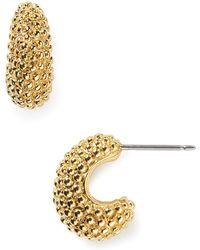 T Tahari - Classic Small Huggie Earrings - Lyst