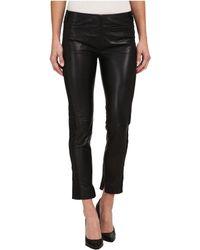 Double D Ranchwear - Italiono Pants - Lyst