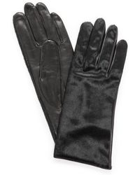 Carolina Amato - Haircalf Leather Gloves - Black - Lyst