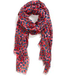 Nicole Miller - '7 Color' Scarf - Lyst