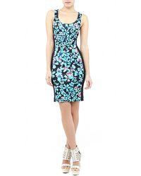 Nicole Miller Alleline Neoprene Dress - Lyst