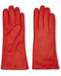 Grandoe - Classic Leather Gloves - Lyst