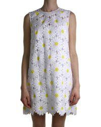 Dolce & Gabbana | White Daisy Dress | Lyst