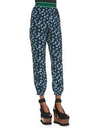 Stella McCartney Stripe-waistband Blossom-print Silk Pants - Lyst