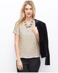 Ann Taylor Champagne Lace Tee - Lyst
