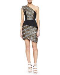 Sass & Bide Asymmetric Natural Selection Peplum Dress