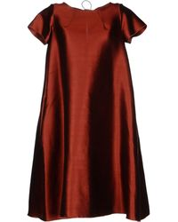Ter Et Bantine Kneelength Dress - Lyst