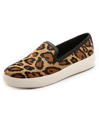 e47fba30a8fd22 Becker Leopard Print Calf Hair Plimsolls. £130 Sold out. Harvey Nichols · Sam  Edelman - Becker Slip On Trainers - New Nude Leopard Black - Lyst