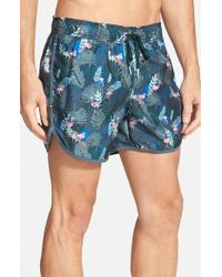 Rainforest - 'Flamingo' Swim Trunks - Lyst