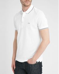 Lacoste Blue Outline Croc Ss Polo Shirt white - Lyst