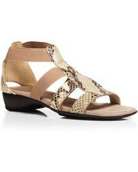 Munro - Sandals - Zena Elastic - Lyst