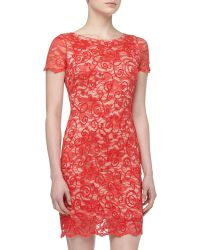 Alexia Admor Filigree Beaded Sequined Lace Cocktail Dress Coral - Lyst
