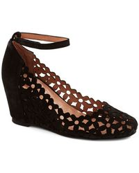 Jeffrey Campbell The Conservatory At Twilight Wedge - Lyst
